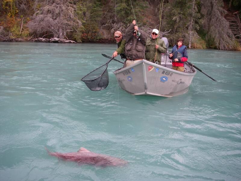 Kenai fly fishing guides home water for Kenai river fishing